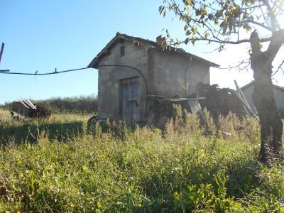 rustico agricolo con terreno